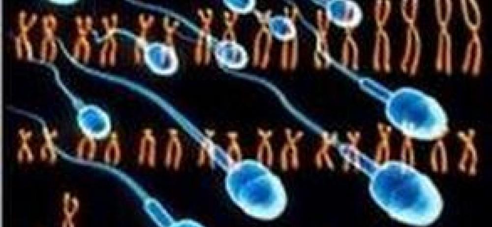 Мужское бесплодие: цифры и закономерности