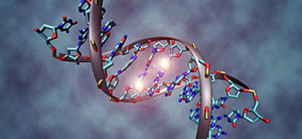Наука расшифровывает механизм развития опухоли