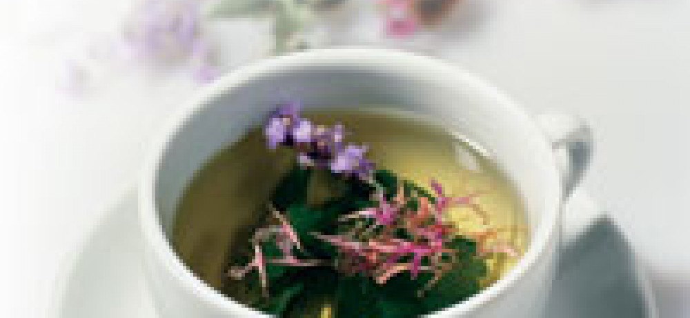 Растительный препарат – альтернатива антибиотикам при лечении инфекций мочевых путей у женщин...