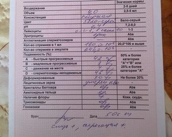 usloviya-dlya-sdachi-spermogrammu
