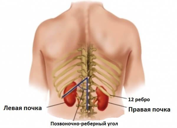 Болит под ребрами с лева со спины